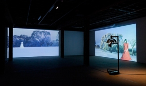 The Woman and the Snowman, 2013, installation view, Artspace Sydney, photo Silversalt Photography